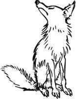 Hochnäsiger Hund