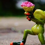 Frosch - Chrissies Crushes