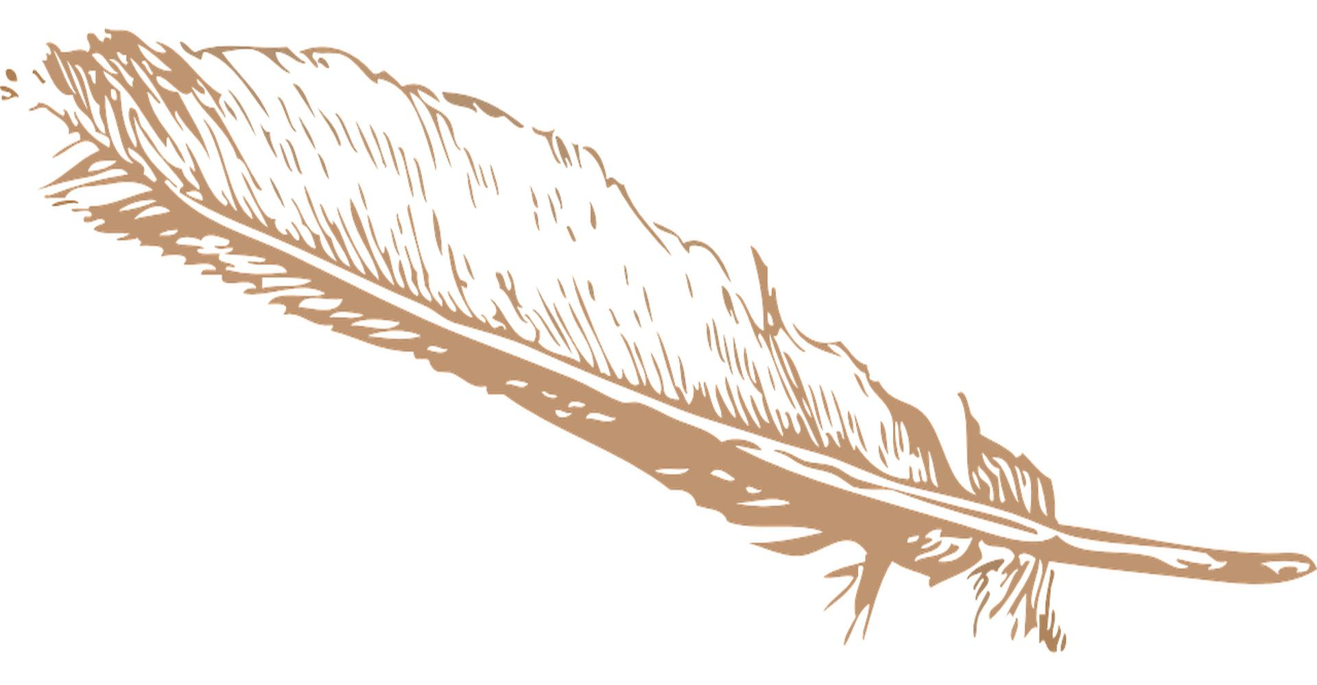 Fremde Federn - Feder